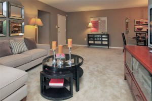 Apartments-baltimore-tall-oaks-apartment-homes-living-room
