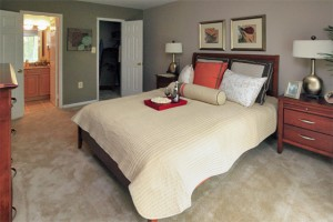 Master bedroom - 2 bedroom apartment, Laurel, Maryland