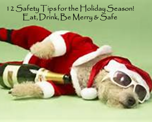 12 safety tips for the holiday season eat drink be merry and safe