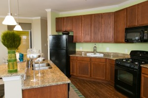 New construction apartments Frederick, MD kitchens