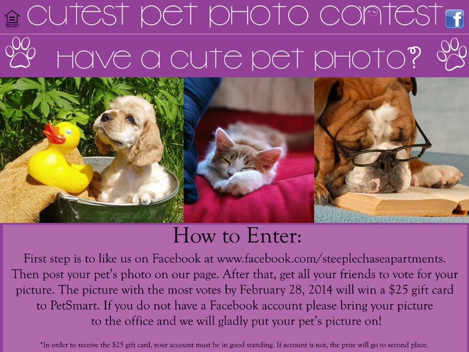 Steeplechase Apartment Homes hosts cutest pet photo contest on Facebook