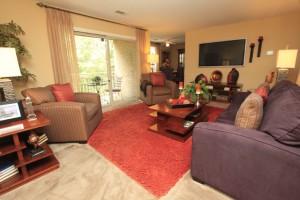 living-room-steeplechase