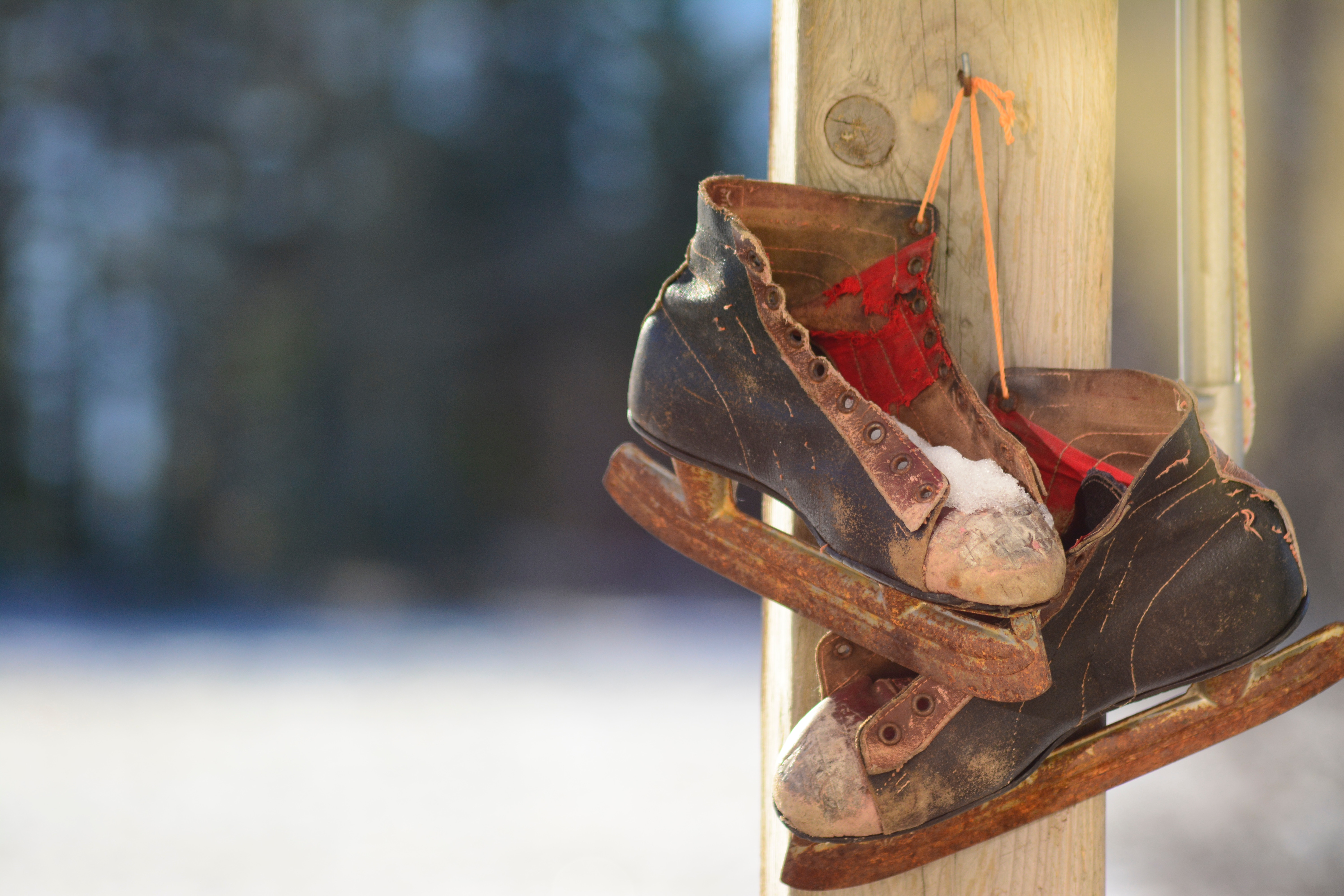 pair of ice skates hanging up outside