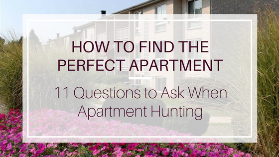 How To Find The Perfect Apartment 11 Questions To Ask When Apartment Hunting