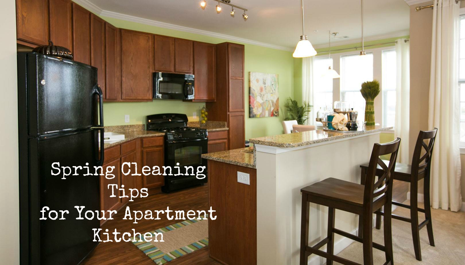 spring_cleaning_your_apartment_kitchen.2