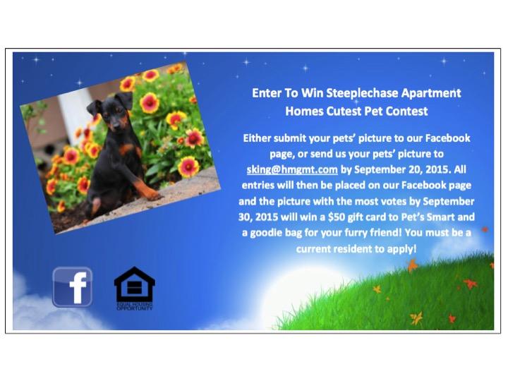 cockeysville_pet_friendly_apartments_cutest_pet_contest_2015