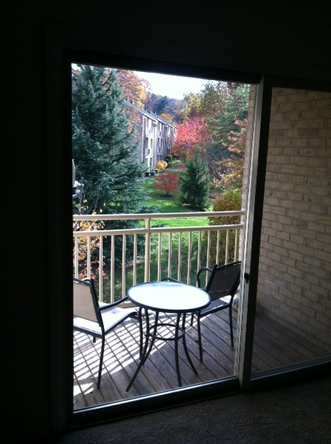 apartments_cockeysville_fall_view_steeplechase
