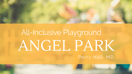 all inclusive playground angel park located in perry hall maryland