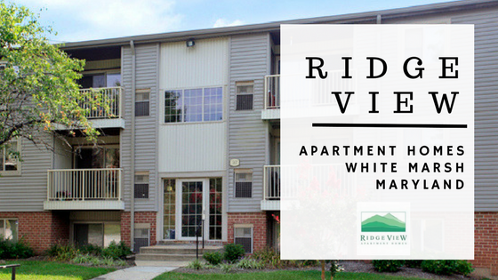 ridge view apartment homes in white marsh maryland