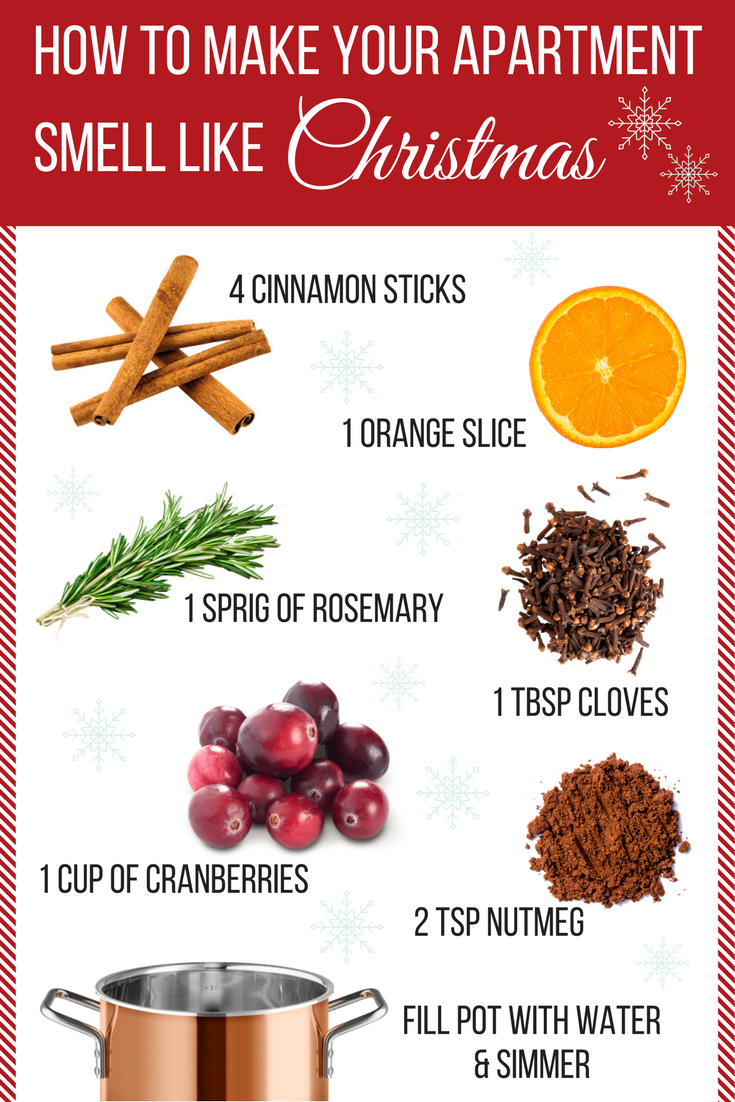 How to make your apartment smell like Christmas inforgraphic