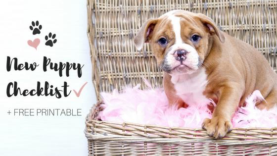 new puppy checklist plus free printable