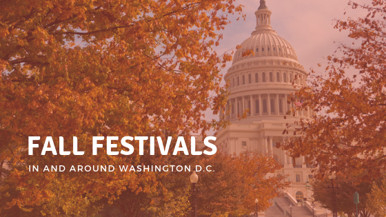 fall festivals in and around washington dc